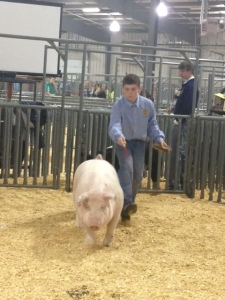 Cole and pig